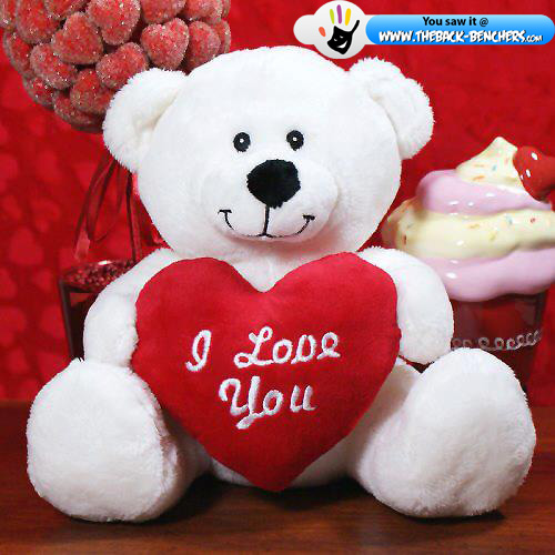happy Teddy day 2012