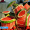 Watermelon drums Art