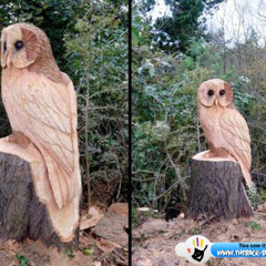 Incredible Tree owl Sculpture