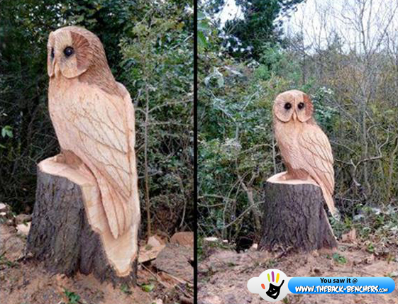 wooden owl art