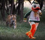 tiger funny image